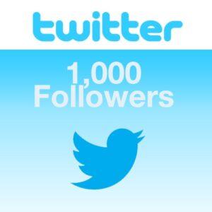 Buy 1000 Twitter follower